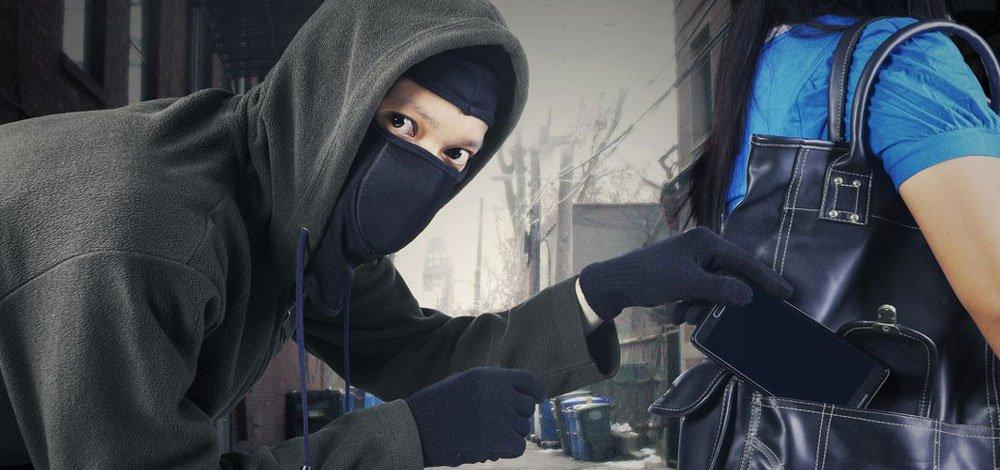 maywood theft defense attorneys